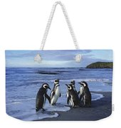 Magellanic Penguin Trio On Beach Weekender Tote Bag