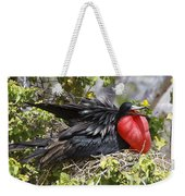 Magnificent Frigatebird Galapagos Weekender Tote Bag