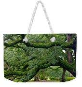 Magnificent Oak Alley Tree Weekender Tote Bag
