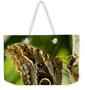 Magnificent Owl Butterfly Weekender Tote Bag
