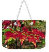 maine 37 Maple Leaf Fall Foliage Weekender Tote Bag