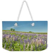 Maine Wild Lupine Flowers Weekender Tote Bag