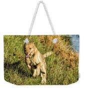 Maisie - Boundless Energy Weekender Tote Bag