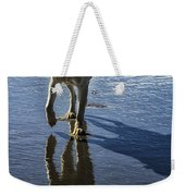 Maisie At The Beach Weekender Tote Bag