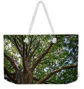 Majestic Oak Weekender Tote Bag