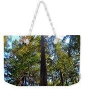 Majestic Trees Weekender Tote Bag