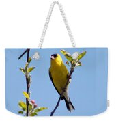 Male American Goldfinch Gathering Feathers For The Nest Weekender Tote Bag