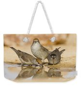 Male And Female Eurasian Blackcaps Weekender Tote Bag