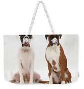 Male Boxer With Female Boxer Dog Weekender Tote Bag