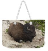 Male Buffalo At Hot Springs Weekender Tote Bag