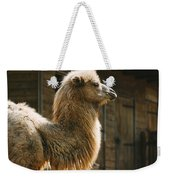 Male Camel Head Weekender Tote Bag