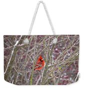 Male Cardinal Cold Day 2 Weekender Tote Bag