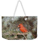 Male Cardinal In Spruce Tree Weekender Tote Bag