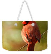 Male Cardinal In The Sun - Digital Paint Weekender Tote Bag