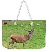 Male Deer On Field Weekender Tote Bag