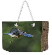 Male Eastern Bluebird Weekender Tote Bag