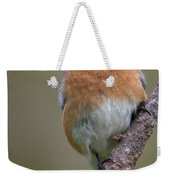 Male Eastern Bluebird With Spider Weekender Tote Bag