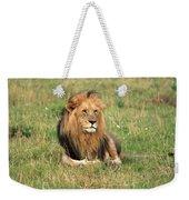 Male Lion On The Masai Mara Weekender Tote Bag by Aidan Moran