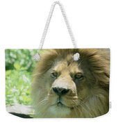 Male Lion Up Close Weekender Tote Bag