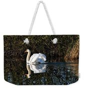 Male Mute Swan Weekender Tote Bag