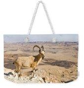 Male Nubian Ibex Capra Ibex Nubiana 1 Weekender Tote Bag