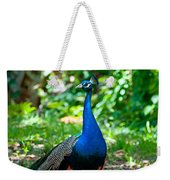 Male Peacock Weekender Tote Bag