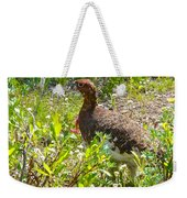 Male Ptarmigan Along Savage River Trail In Denali Np-ak Weekender Tote Bag