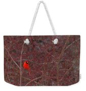 Male Red Cardinal In The Snow Weekender Tote Bag