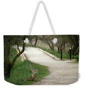Male Red Fox Vulpes Vulpes Weekender Tote Bag