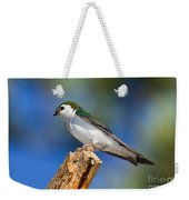 Male Violet-green Swallow Weekender Tote Bag