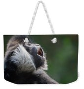 Male White-cheeked Gibbon Weekender Tote Bag