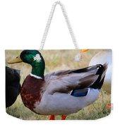 Mallard Colors Weekender Tote Bag