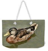Mallard Duck Series #1 Weekender Tote Bag