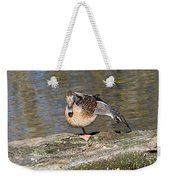 Mallard Duck Stretch  Weekender Tote Bag