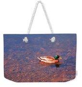 Mallard In Spring Weekender Tote Bag