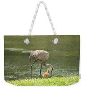 Mama And Chick Weekender Tote Bag