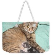 Mama Cat And Her Kittens Weekender Tote Bag