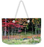 Man Ruins Nature Weekender Tote Bag