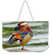 Mandarin Duck Posing Weekender Tote Bag