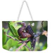 Mangrove Tree Crab Weekender Tote Bag