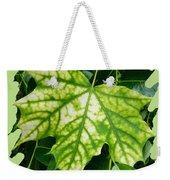 Maple Leaf In The Laurel Weekender Tote Bag