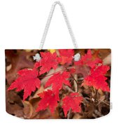 Maple Leaf Palette Weekender Tote Bag