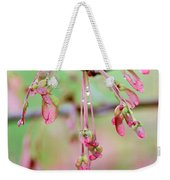 Maple Leaf Seed Pods   Weekender Tote Bag