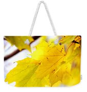Maple Leaves At Autumn Glory 1 Weekender Tote Bag
