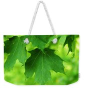 Maple Leaves Weekender Tote Bag