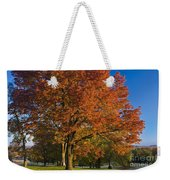Maple Trees Weekender Tote Bag