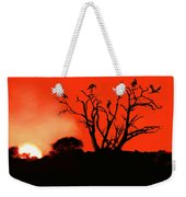 Marabou Tree Weekender Tote Bag