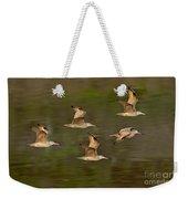 Marbled Godwit Flock Flying Weekender Tote Bag