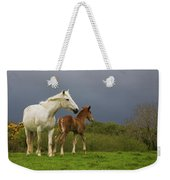Mare And Foal, Co Derry, Ireland Weekender Tote Bag