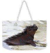 Marine Iguana Galapagos Weekender Tote Bag